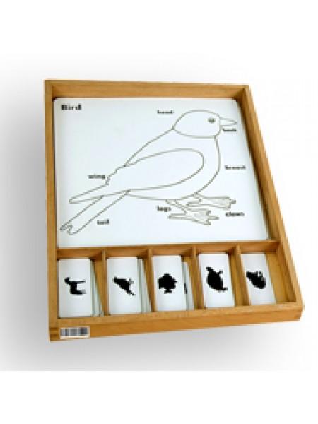 Animal Puzzle Activity Set (Bird)