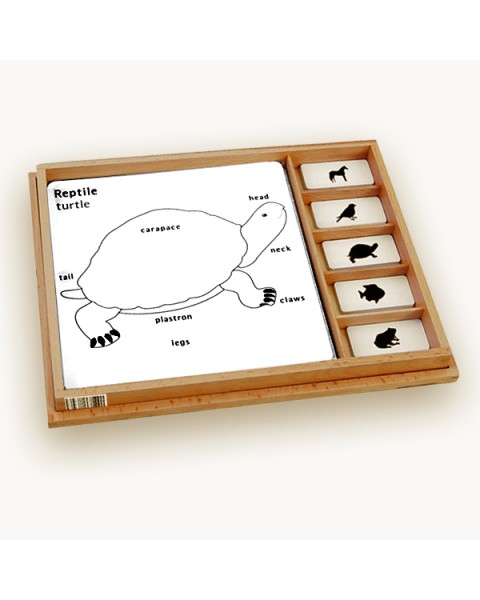 Animal Puzzle Activity Set (Reptile)